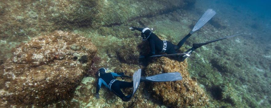 top9 bienfaits chasse sous-marine subea decathlon
