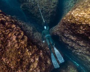 Come scegliere gli elastici e le aste per la pesca subacquea?