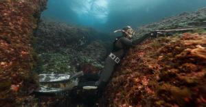 Comment choisir son lestage de chasse sous-marine ?
