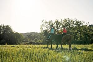 equitation fouganza balade cheval conseil decathlon