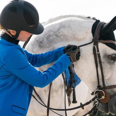 Wie wähle ich die passende Trense für mein Pferd aus