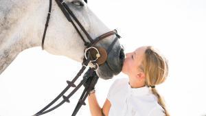 cheval en concours avec sa cavalière