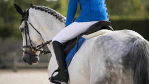checklist om je paardrijwedstrijd voor te bereiden