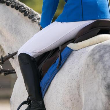 Die unterschiedlichen Fellfarben des Pferdes