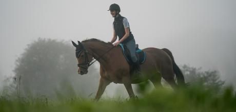 Alt/comment-choisir-sa-selle-d-equitation-trotting