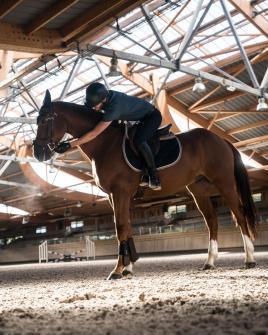 cheval et cavalier