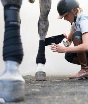 bandages aanbrengen bij je paard