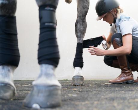 Meisje dat de polobandages aanbrengt bovenaan de linkerpoot van het paard