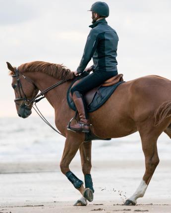 paard op het strand