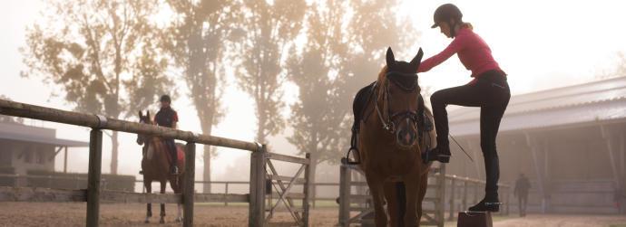 op zijn paard