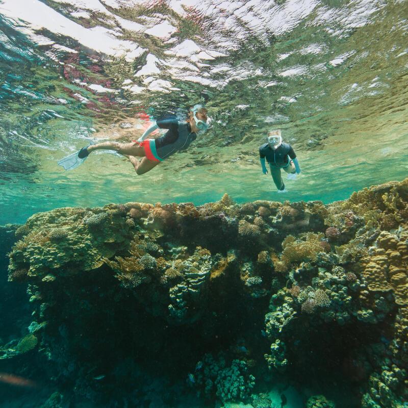 Como escolher o local para a prática de snorkeling ?