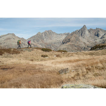 T-shirt manches courtes trekking montagne TREK 100 femme - 1287528