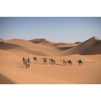 Trekkinghose Desert 500 Herren braun