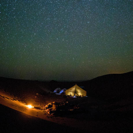 a night in the desert under the stars