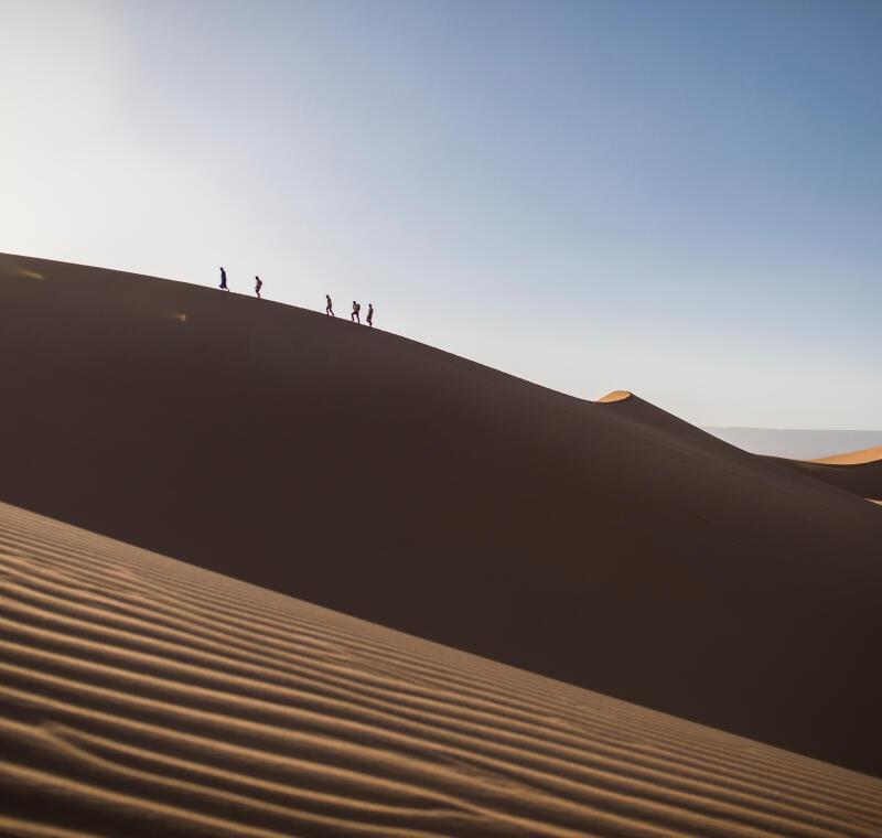 comment supporter la chaleur dans le désert