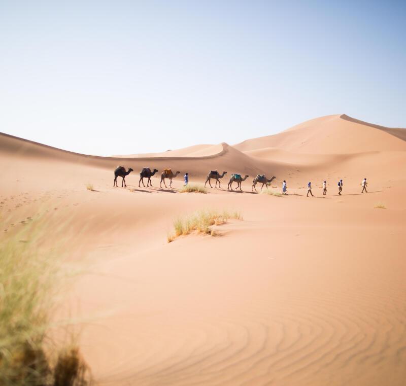 comment s'équiper pour un trek dans le désert ?