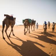 Trek désert Maroc organisation