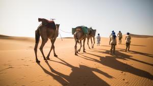 trek desert maroc sahara