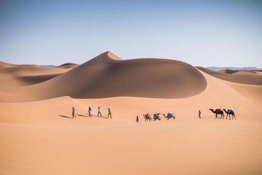 Le trekking dans le désert