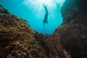 La réglementation en chasse sous-marine
