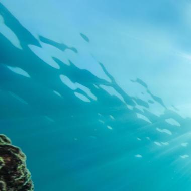 Comment choisir son masque de chasse sous-marine ?