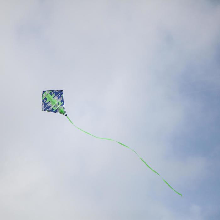 2-in-1 vlieger (bestuurbaar <-> niet bestuurbaar) - Izypilot 100 - 1299482