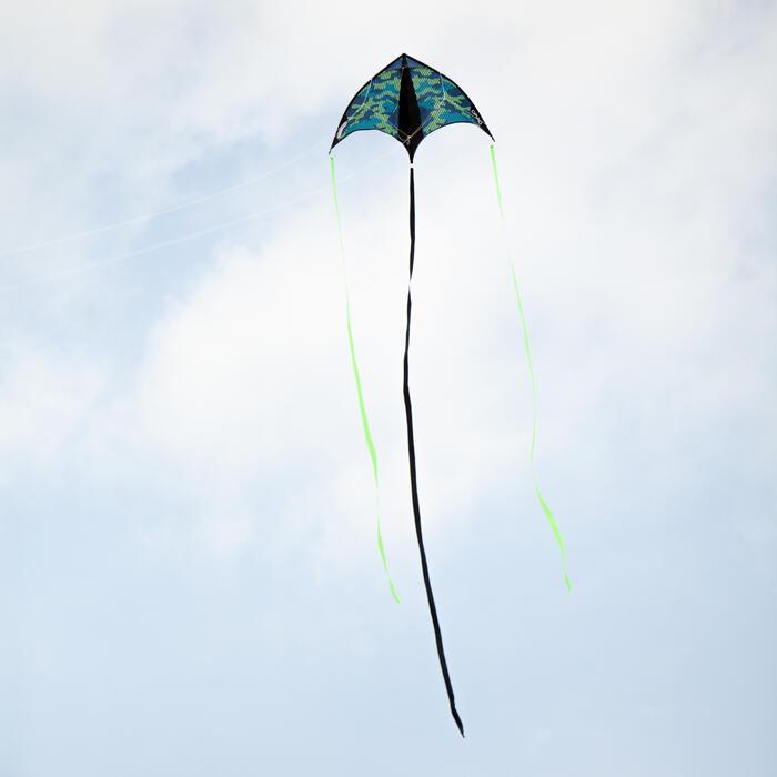 Flugdrachen 2-in-1 (statisch und lenkbar) Izypilot 160 grün