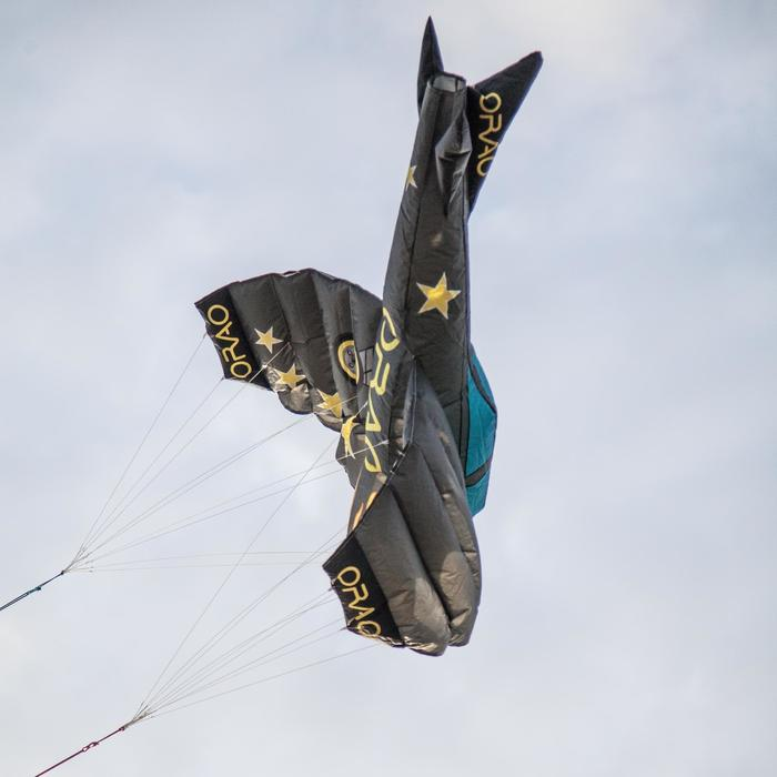 Cometas acrobáticas Playa Orao 3D PLANE 180 Para Niños Gris/Azul Avión