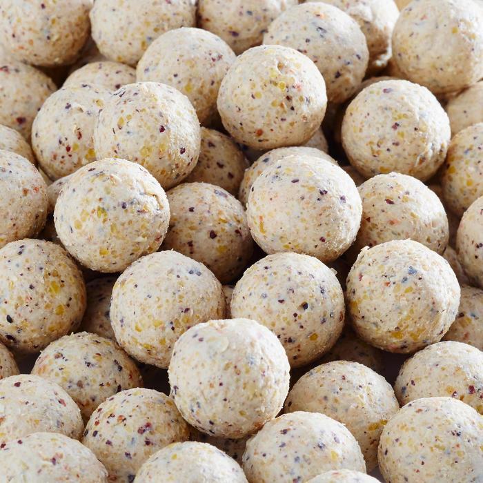 Boilies Wellmix 14 mm weiße Schokolade 1 kg Karpfenangeln