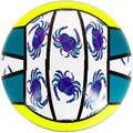 BEACH-VOLLEY Volleyball and Beach Volleyball - BV100 Fun Ball - Yellow/Green COPAYA - Volleyball and Beach Volleyball