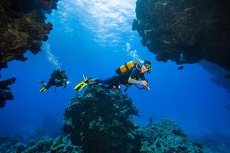 Como preparar a viagem de mergulho?