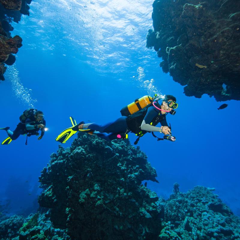 test combinaison SCD 540 eaux chaudes subea secrets de plongée