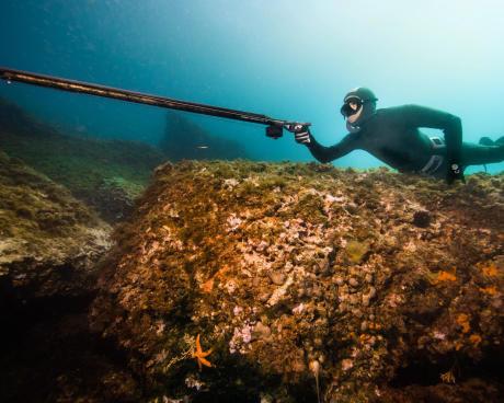 Les règles pour pratiquer la chasse sous-marine