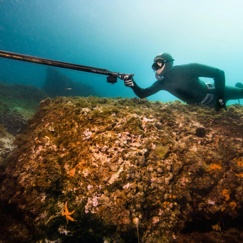 Comment choisir son arbalète de chasse sous-marine ?