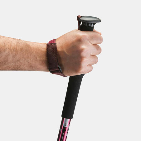 1 easy adjust country walking pole | A200 - Purple