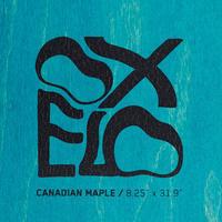 "Team Nude 8.25"" Skateboard Deck - Blue"