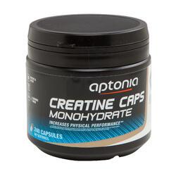 Kreatin Monohydrat 240 Kapseln