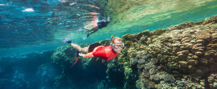 enquête masques de snorkeling subea conception