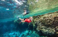Adults' snorkel FRD100 grey