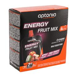 Spécialité de fruits ENERGY FRUIT MIX Pomme Fruits Rouges 4x90g