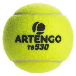 Tennisballen voor competitie TB530 3 stuks geel