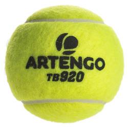 BALLE DE TENNIS PRESSION TB 920 *3 JAUNE
