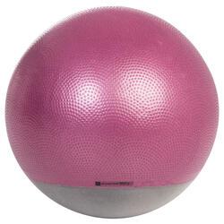 SWISS BALL STABLE...