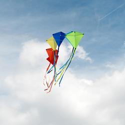 Vlieger MFK 100 rood
