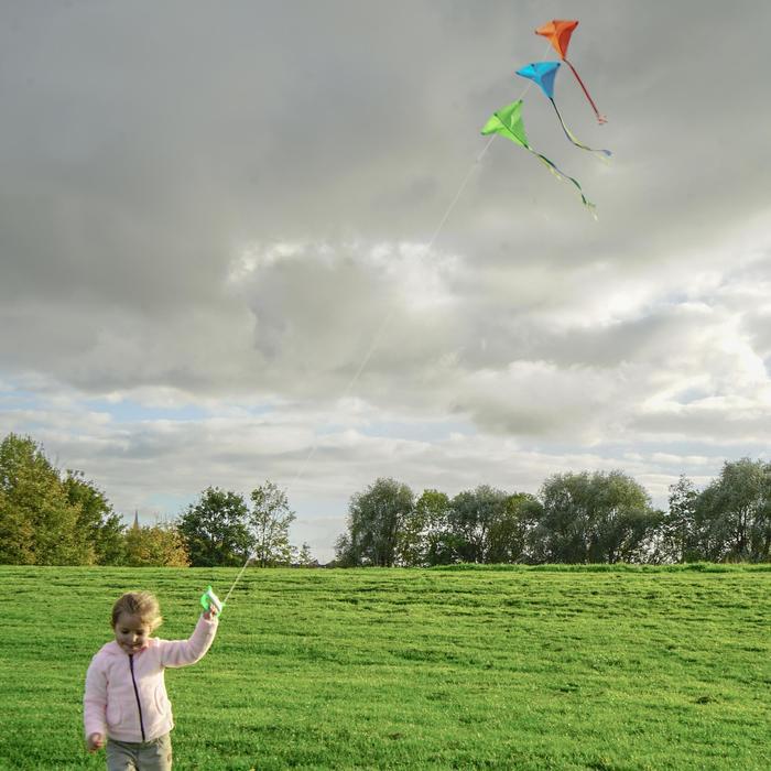 Cometas acrobáticas Playa Orao Para Niños MFK 100 Verde Estática
