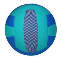 V100 Volleyball
