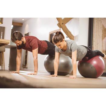 FITBALL SWISS BALL GIMNASIA PILATES DOMYOS ROSA ESTABLE
