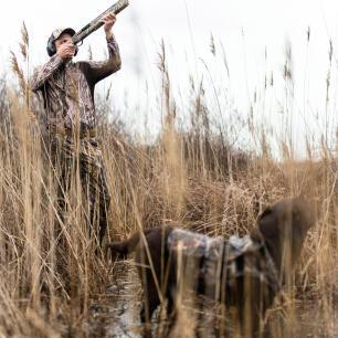 chasse au gibier d'eau