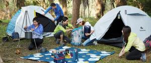 camping beginner