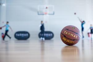 exercitar os músculos para o basquetebol